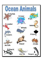 ocean animals matching cards 171 preschool and homeschool ocean print worksheets english worksheet ocean animals