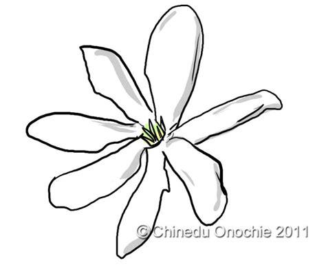 Gardenia Flower Drawing How To Draw Gardenia Flowers