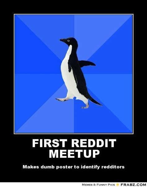 Meme Penguin - socially awkward penguin meme template image memes at