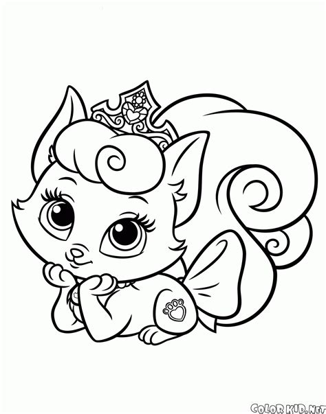 coloring pages pets coloring page palace pets
