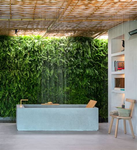 Plants In Bathroom by Best Bathroom Plants To Decorate Your Modern Bath With