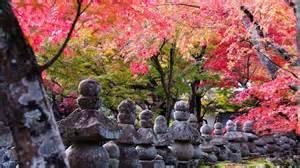bakas em tokyo tour pelo 227 o kyoto