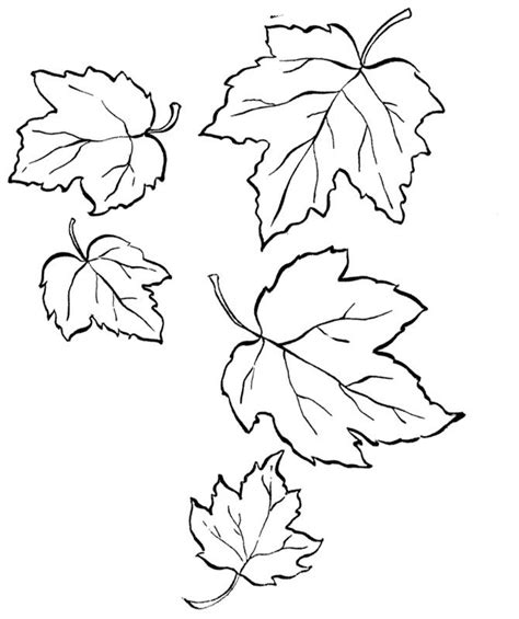 a forked leaves fall coloring pages thanksgiving