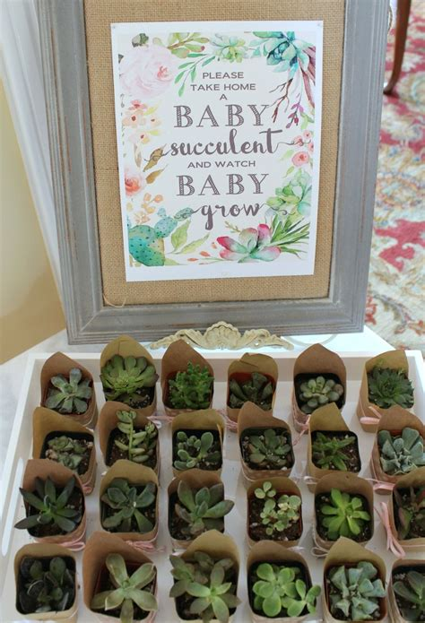 take home for baby take home a baby succulent baby shower favors baby