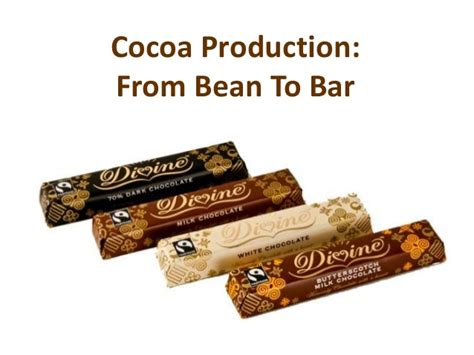 chocolate from bean to bar to s more books cocoa production ppt