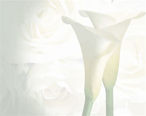 Wedding Background For Pictures by Wedding Picture Backgrounds Wallpaper Cave