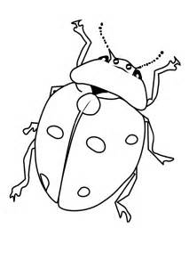 color bug bugs coloring worksheets coloring pages