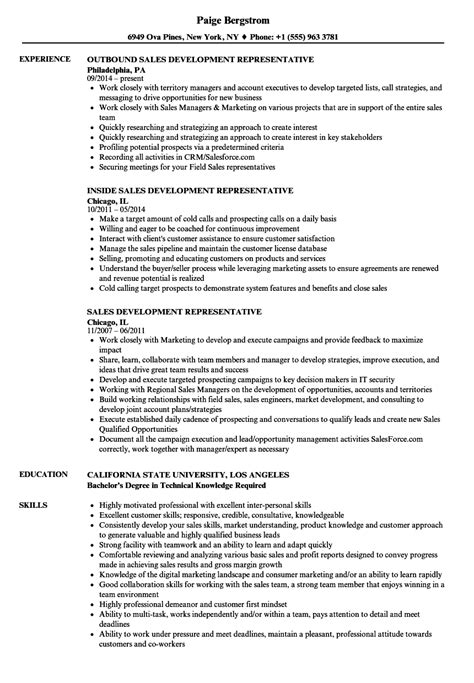 Professional Resume Sles In Word Format by 19551 Resume Format Sles Exles Of Sales Resumes Resume