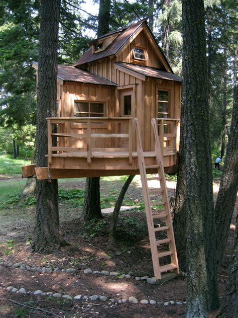 Backyard Treehouse For by Modern Backyard Tree House Pictures Photos And Images For And