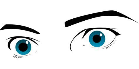 ver imagenes en png ojos azules las cejas 183 gr 225 ficos vectoriales gratis en pixabay