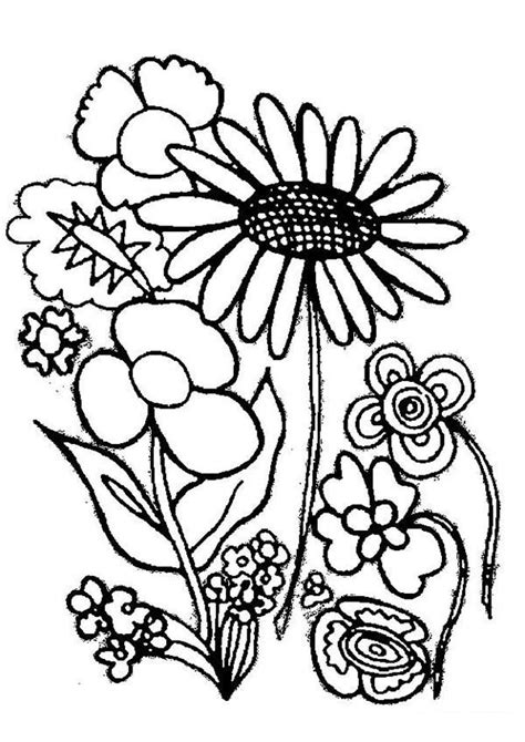 types of flowers coloring pages various type of flower plants coloring page coloring sky