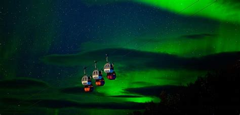northern norway northern lights northern lights in narvik official travel guide to