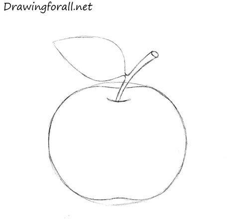 apple drawing how to draw an apple for beginners drawingforall net