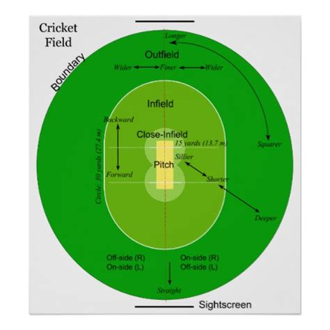 diagram of cricket field cricket pitch diagram images
