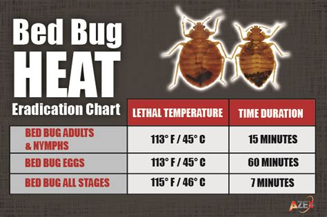 Bed Bug Heat Treatments Azex Pest Solutions Bed Bed Bug Pictures Azex Pest Solutions Bed Bug Heat And Termite Experts