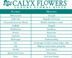 flower color meanings chart symbolic meaning of alstroemeria telefloracom