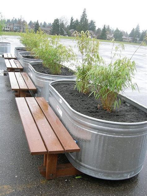 galvanized trough planters 8 best bamboo galvanized troughs images on