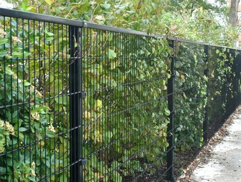 Metal Garden Fence Decorative Garden Fence Panels Gates Metal Garden Fencing Ideas