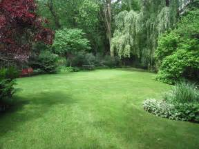 Backyard Ideas Trees Our Yard Has An Amazing Open Grass Space Surrounded By The