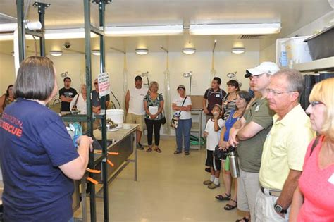 heat l for bird aviary international bird rescue every bird matters 187