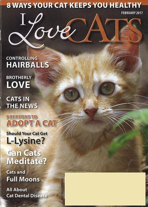 love cats magazine discountmagscom