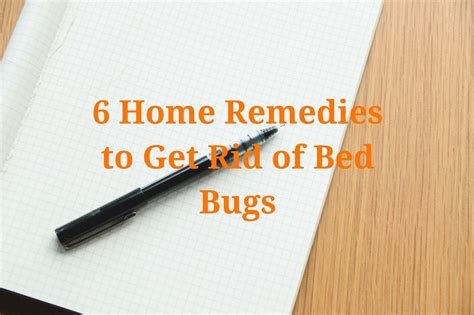 home remedies   rid  bed bugs planet orange