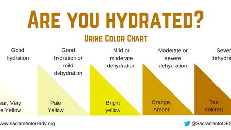 color experts   urine