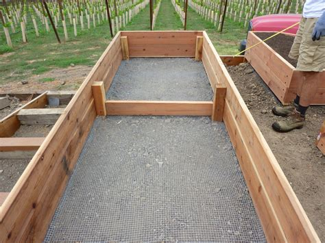 Building A Planter Box For Vegetables by Foods For Start Your Fall And Winter Vegetable