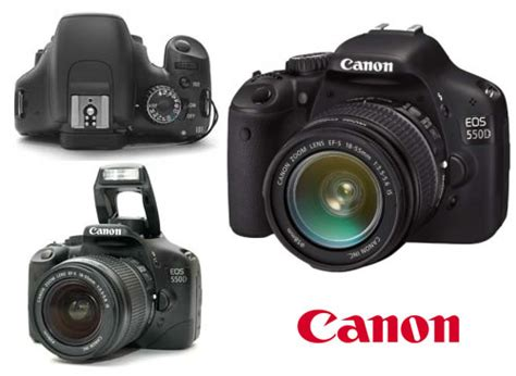 canon eos 550d dslr my new canon 550d why rory is in china