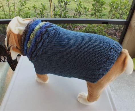 knitting pattern for english bulldog sweater 24 best english bulldog hand knit sweaters images on