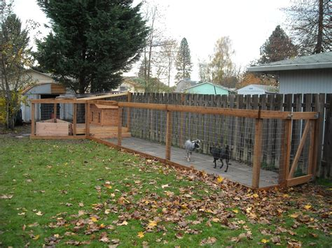 Dog Run Completed With Dogs Added Dog House On Covered Backyard Runs