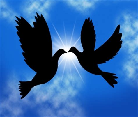 bellas imagenes de amor y paz con movimiento buscar mensajes de paz y amor solo mensajes muy bonitos