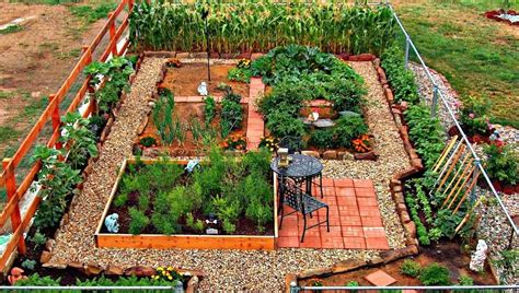 fantastic backyard vegetable garden ideas
