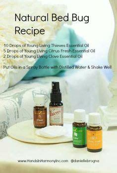 diy bed bug spray  essential oils oils bed bugs essential oils essential oil bug spray