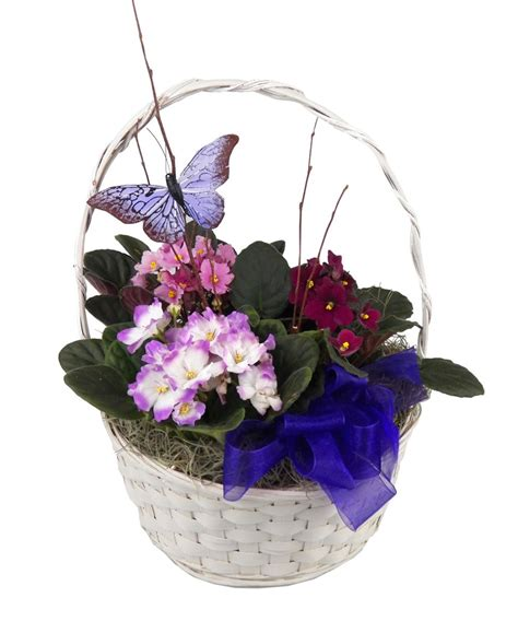 beautiful gifts of springtime bring on the springtime flowers nanz and kraft florists