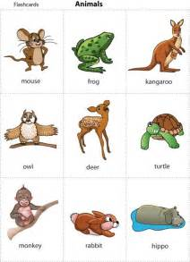 animal pictures for toddlers cards for animal cards for children