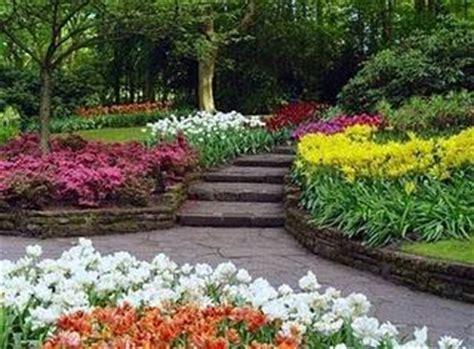 imagenes de jardines y patios fotos de patios y jardines paperblog