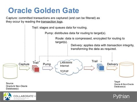 master oracle golden gate 12c beginners to advance golden gate administration with two real time hybrid replication projects inside books dba 101 calling all new database administrators ppt