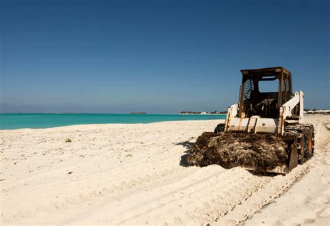 Interior Design Online Software volunteers clear ton of waste from kuwait beaches