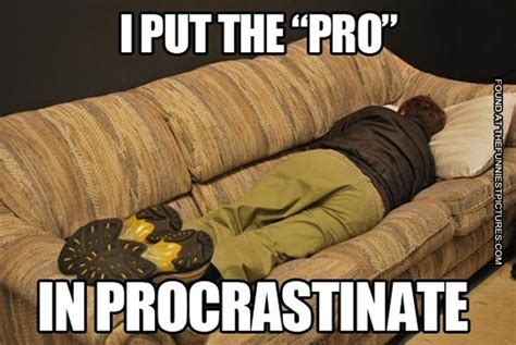 lol couch procrastination expert funniest pictures