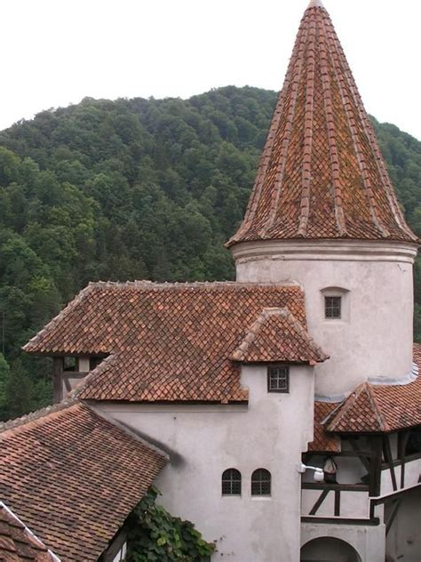 dracula s castle for sale 18 best transylvania images on dracula