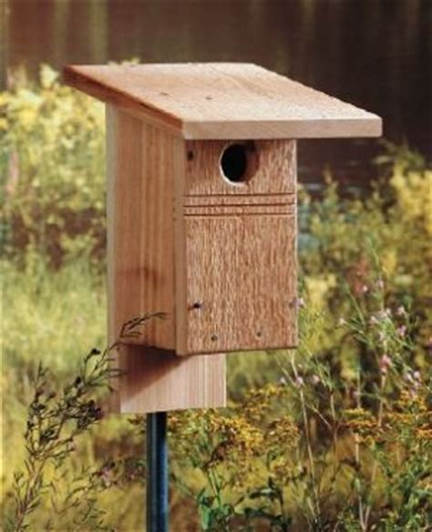 bluebird bird house plans diy birdhouse for bluebirds backyard projects birds and blooms