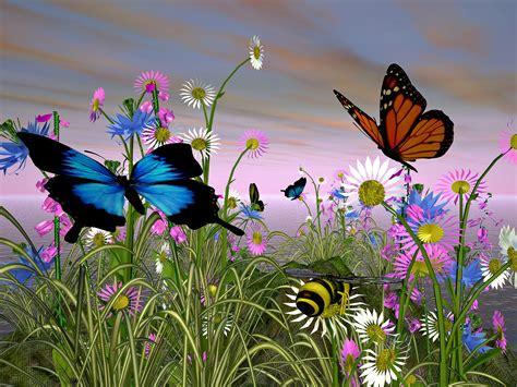 sfondi fiori e farfalle fiori farfalle e colori emozioni