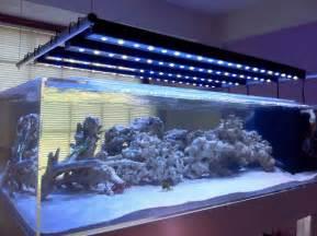 aquarium beleuchtung led led aquarium lighting the buyer s guide home aquaria