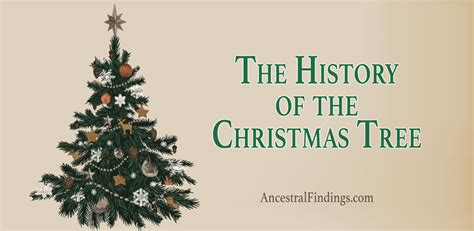 the history of the christmas tree ancestral findings