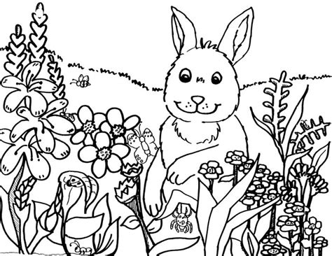 springtime coloring pages for adults coloring pages coloringpagesabc