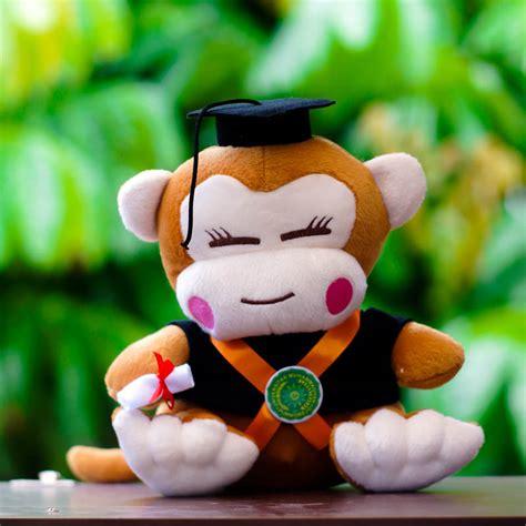 Boneka Wisuda 2016 jual boneka wisuda monyet cewek kado wisudaku