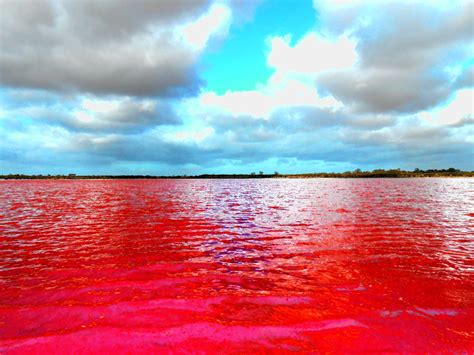 pink lake pink lake e by optilux on deviantart