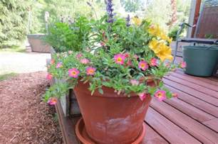 what is the best soil for container gardening 5 secrets to successful container gardening toronto