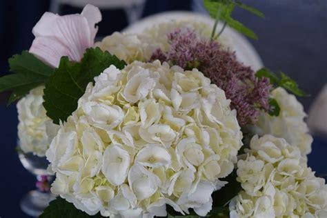 fiori x sposa fiori per bouquet sposa oe16 187 regardsdefemmes